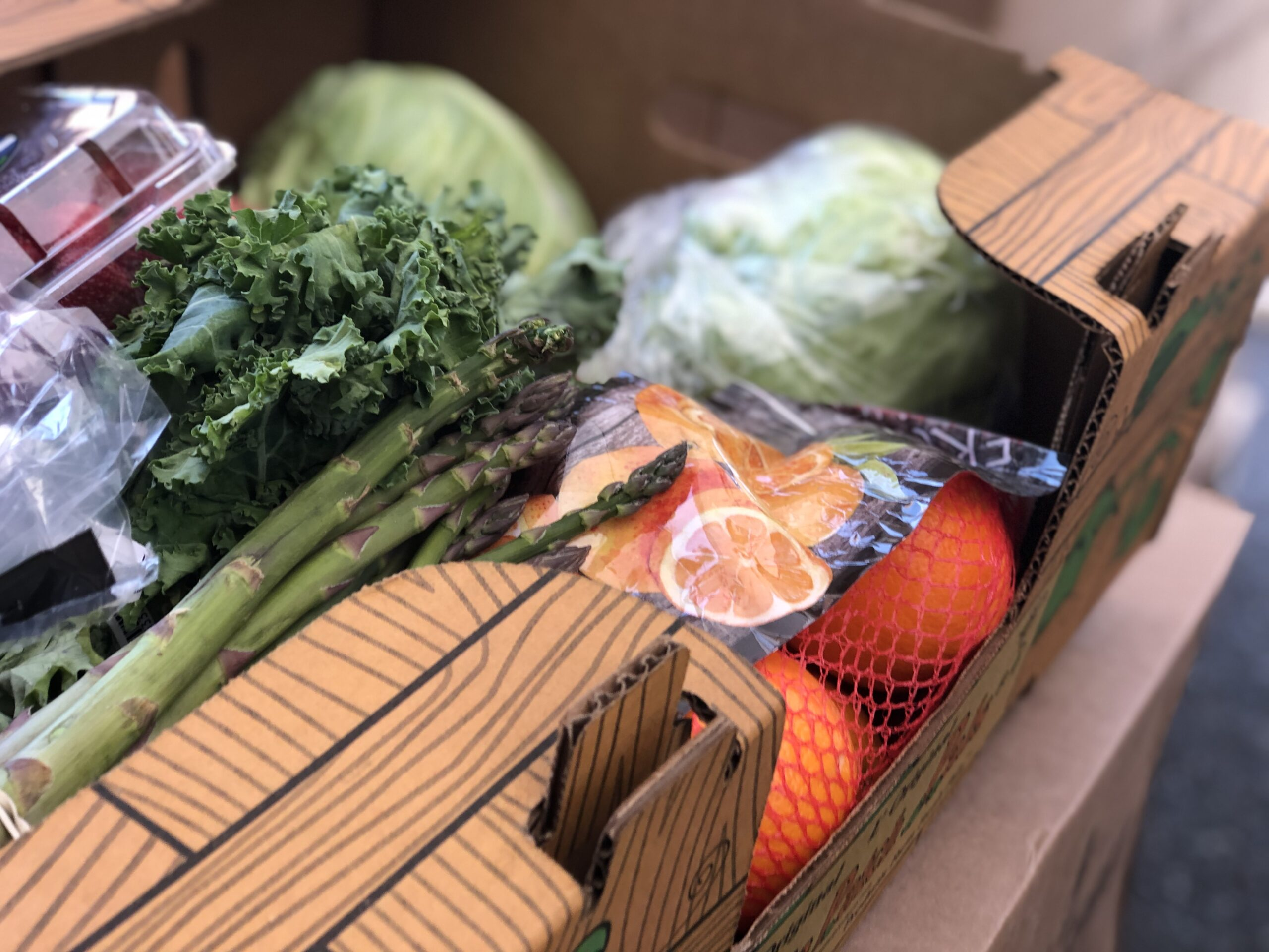 Free Food This Week Food Lifeline